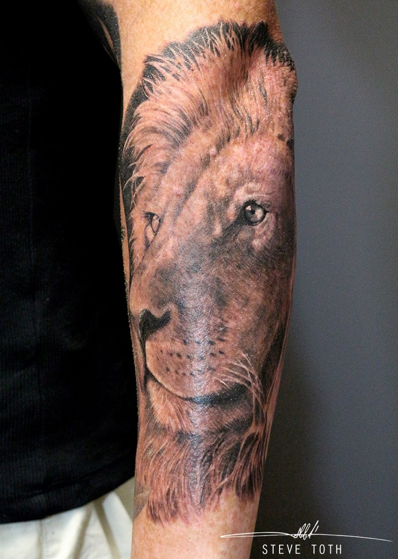 lion-tattoo-by-steve