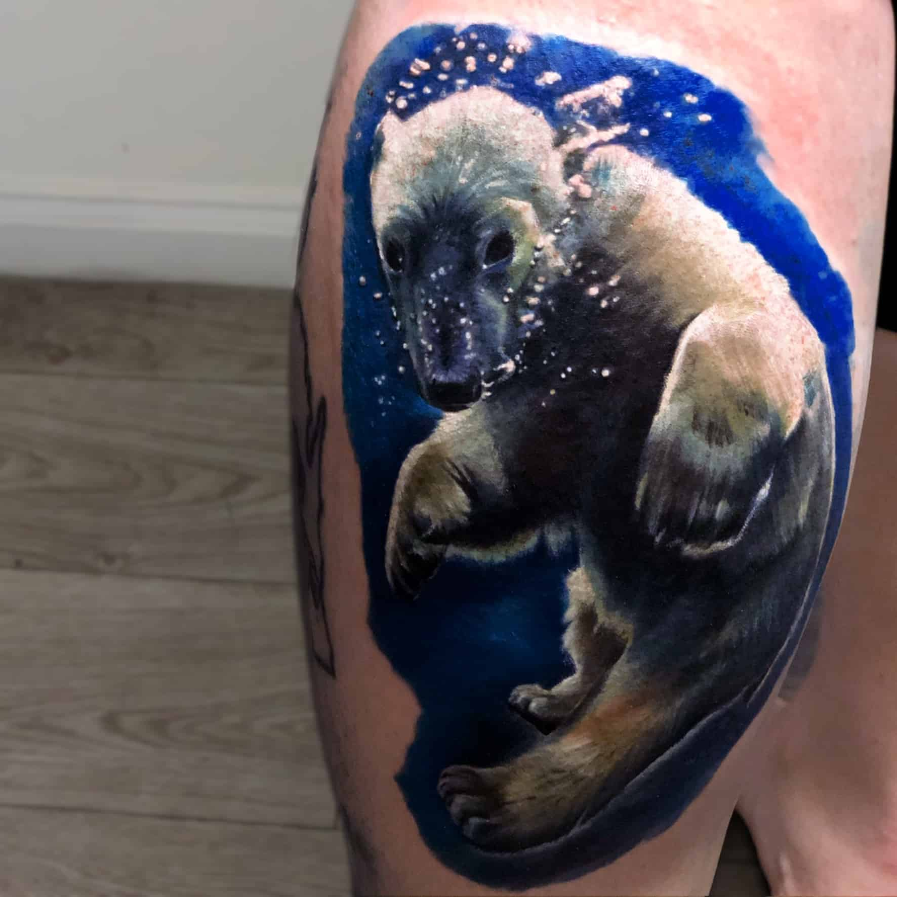 Our top 5 tattoos from the Animal Kingdom!